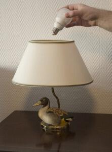 Leuchtmittel - Einsatz von Energiesparlampen