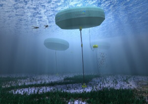 Carnegie Wave Energy_2015_01